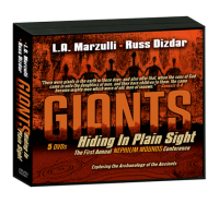 GIANTS_plainsight